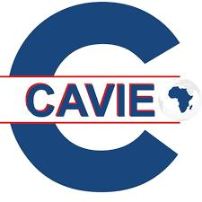 Centre Africain de Veille et intelligence Economique (CAVIE)